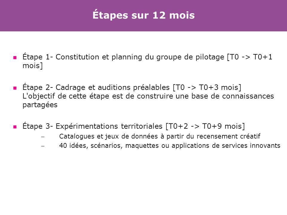Étapes sur 12 mois Étape 1- Constitution et planning du groupe de pilotage [T0 -> T0+1 mois]